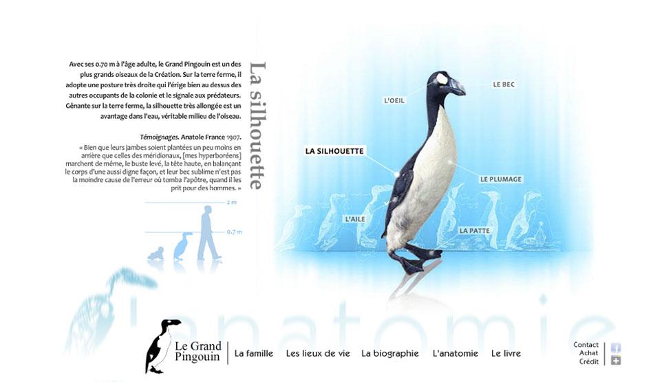 Site internet sur Le Grand Pingouin d'Henri Gourdin