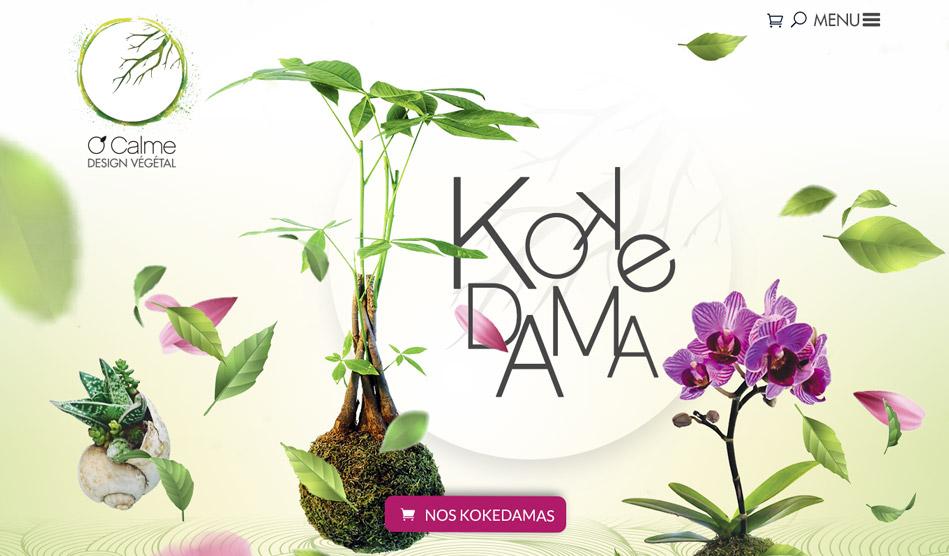 bandeau accueil site kokedama O'Calme